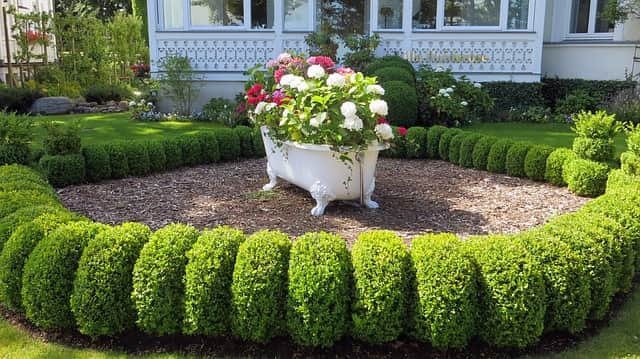 Image result for Front Yard Stand Out This Summer